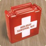 Holiday Survival Guide Part Two