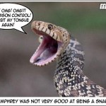 The 6 T's of a Snake bite