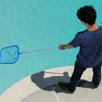 Copper Sulfate: Pool Cleaner, Vineyard Helper or Unsuspected Summer Threat?